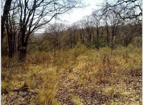 Terreno en venta en Las Animas, Naucalpan Edo Mex
