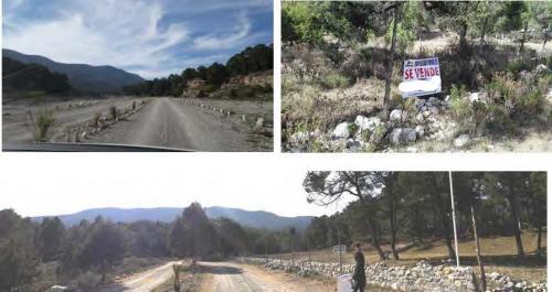 Cinco lotes de terreno campestre en Fracc. Pino Real en Arteaga Coahuila.
